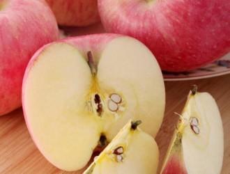 2016年山西省运城市临猗县红富士苹果价格上涨地窖苹果减少